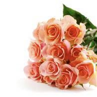 Roses have the frequency of Love